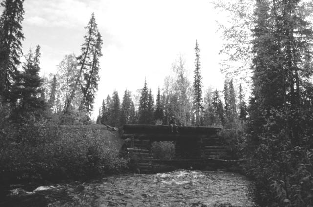 На мосту через Левгус. Денис Крестовников