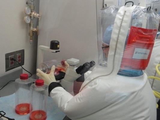 Секретные биолаборатории Пентагона у границ России: расследование