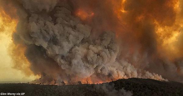 180 человек арестовали за умышленные поджоги лесов в Австралии
