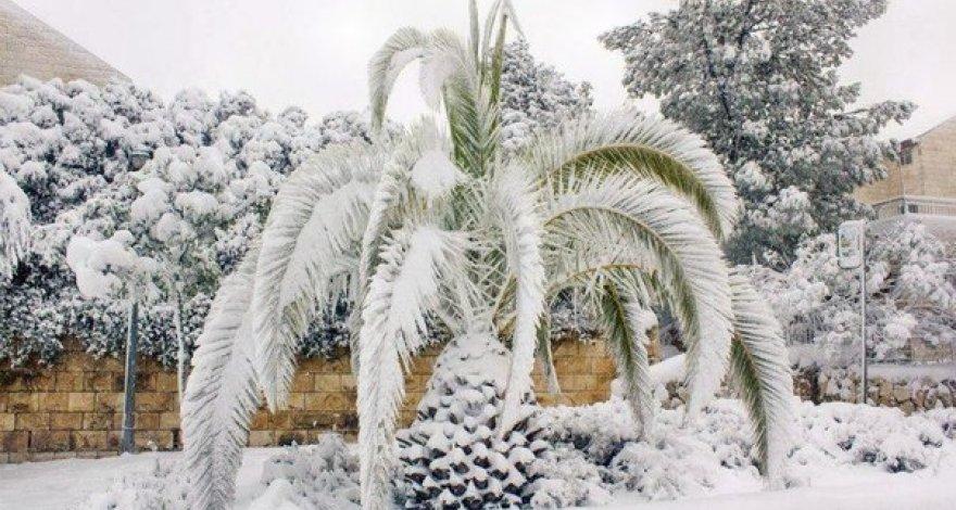 Алжир и Марокко завалило снегом