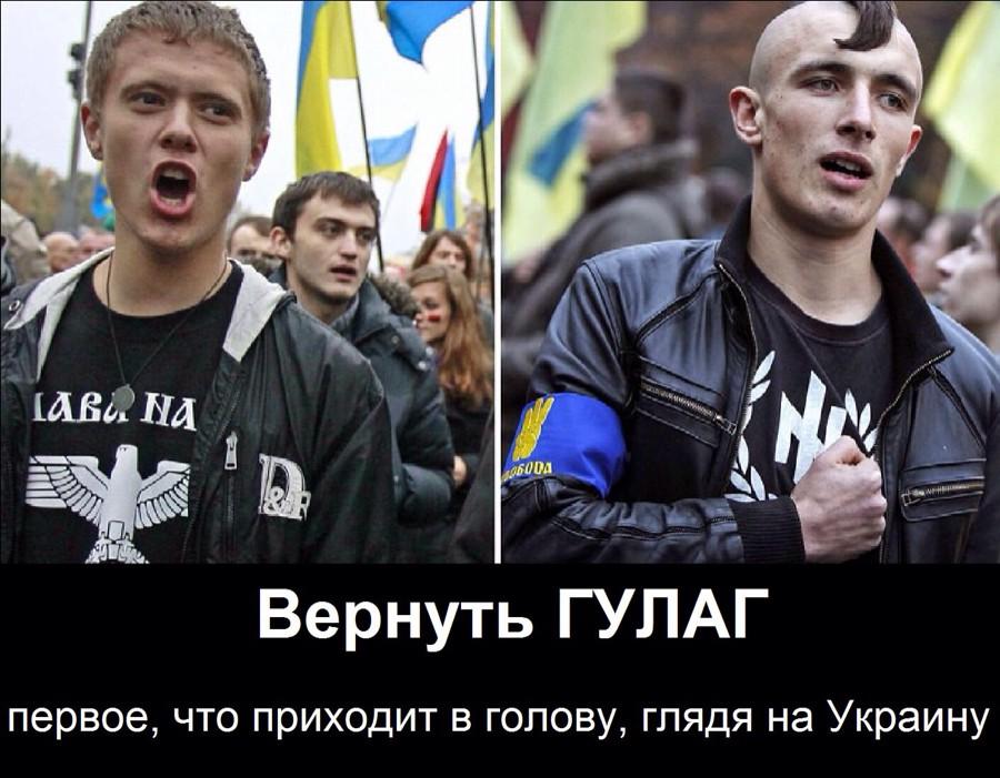 поновидио новое украинское