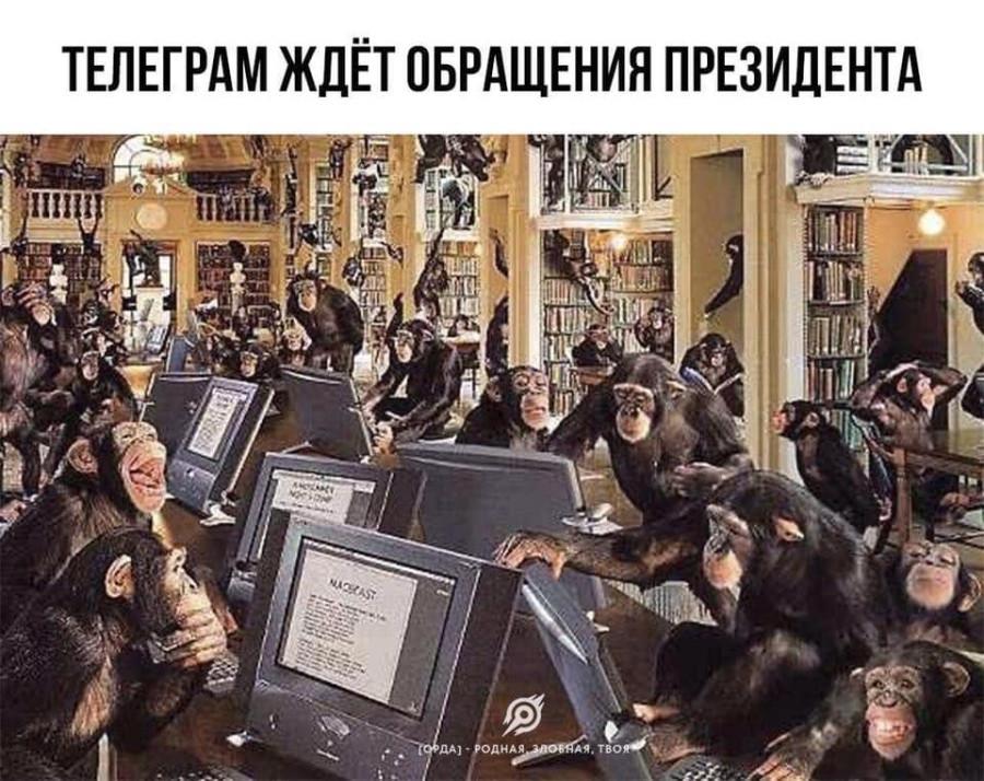 https://ic.pics.livejournal.com/matveychev_oleg/27303223/17065698/17065698_900.jpg