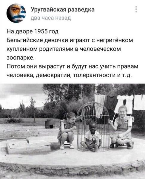 https://ic.pics.livejournal.com/matveychev_oleg/27303223/21382950/21382950_600.jpg
