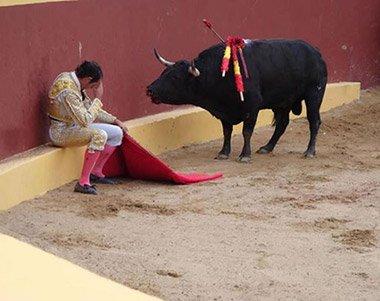 phoca_thumb_l_2-128695_matador