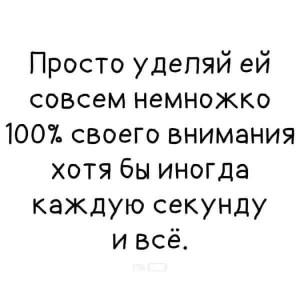 23661902_300.jpg