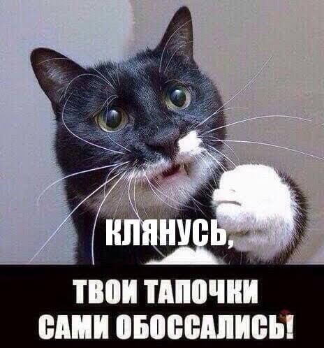 https://ic.pics.livejournal.com/matveychev_oleg/27303223/24106076/24106076_900.jpg