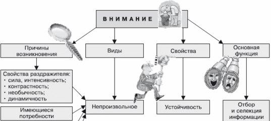 poleznye-i-interesnye-peredachi-na-rossijskom-televidenii-10 (1)
