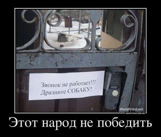 http://ic.pics.livejournal.com/matveychev_oleg/27303223/34270/original.jpg