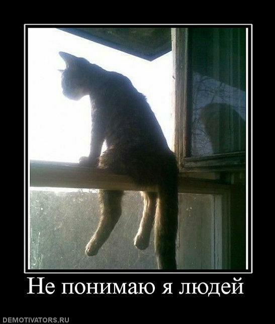 http://ic.pics.livejournal.com/matveychev_oleg/27303223/34444/original.jpg