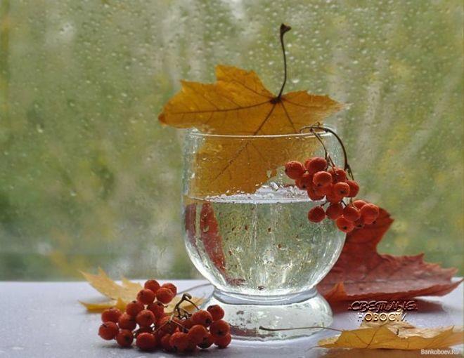DrinkingWaterGlass_web_1024