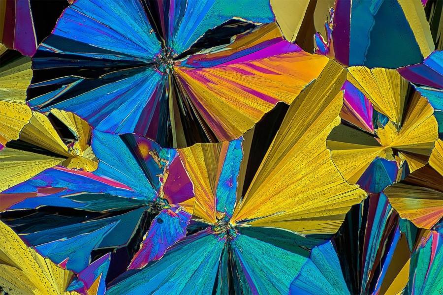 Лекарства под микроскопом