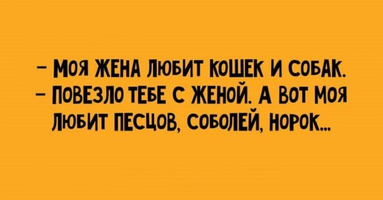samoilova-768x512