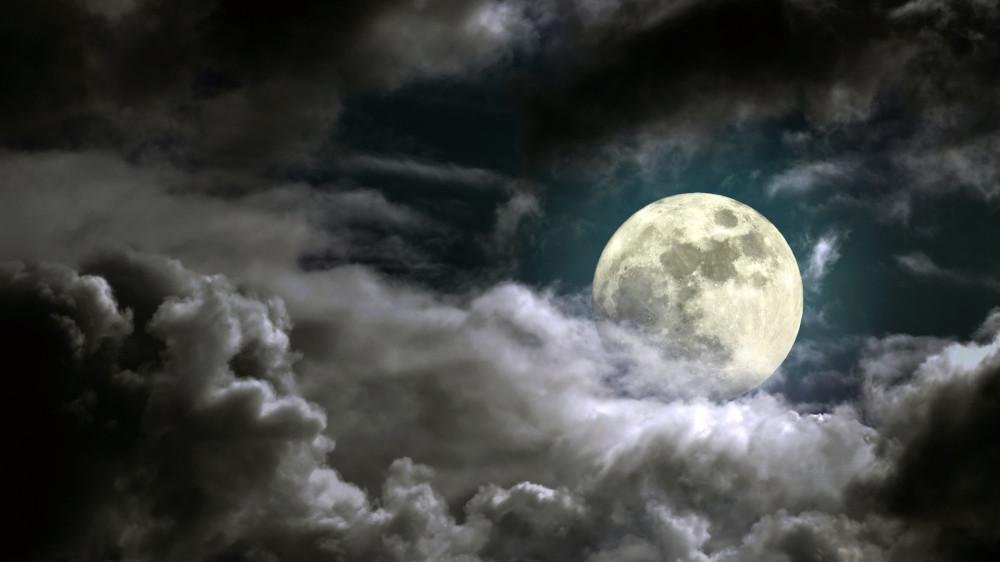 Роскосмос ищет тех, кто полетит на Луну. Полетим? 0