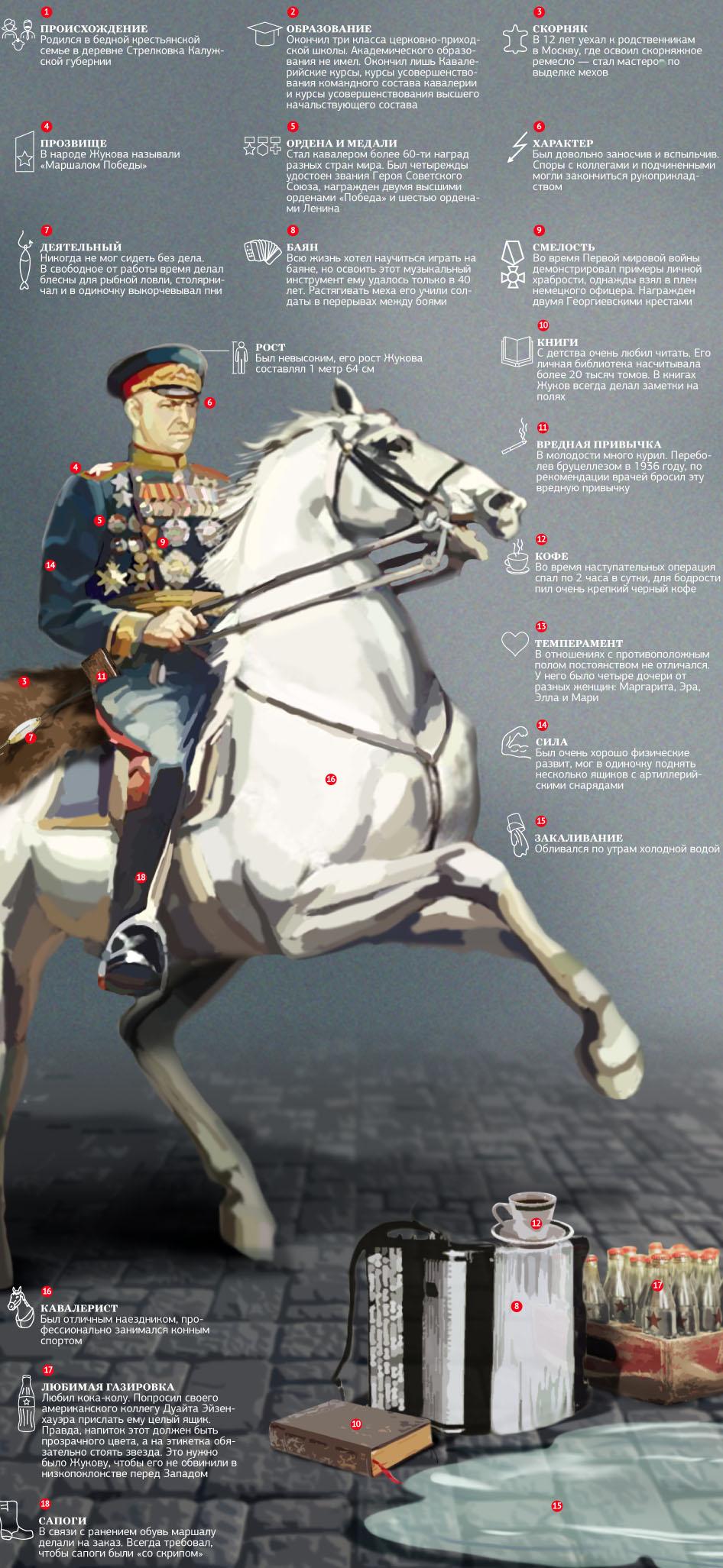 Георгий Жуков. Особые приметы. Инфографика