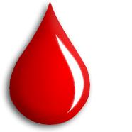 Какая группа крови самая распространенная у русских?