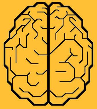 Попытки компьютеризировать ваш мозг.  Илон Маск- не единственный