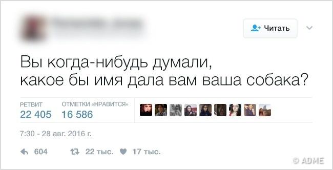 Философские твиты, которые сломали логику