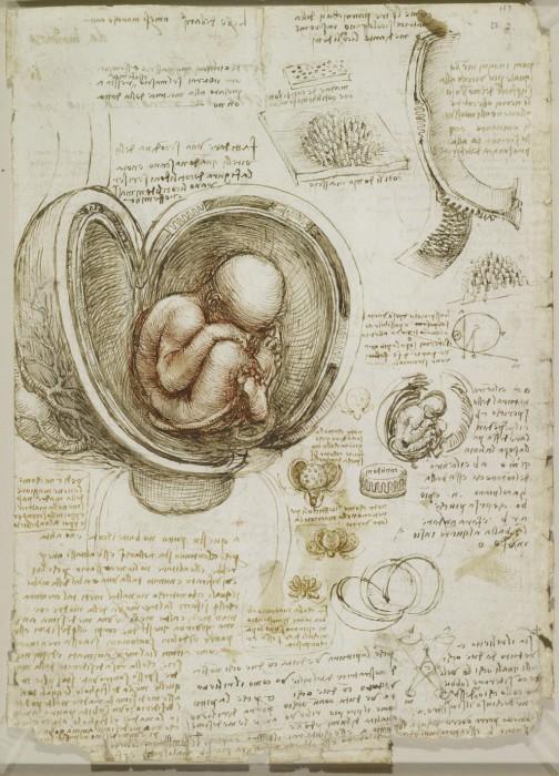 Leonardo-da-Vinchi1