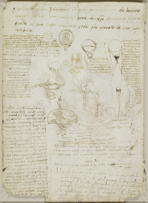 Leonardo-da-Vinchi2