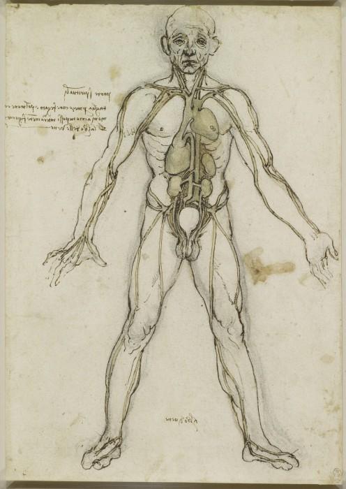 Leonardo-da-Vinchi3