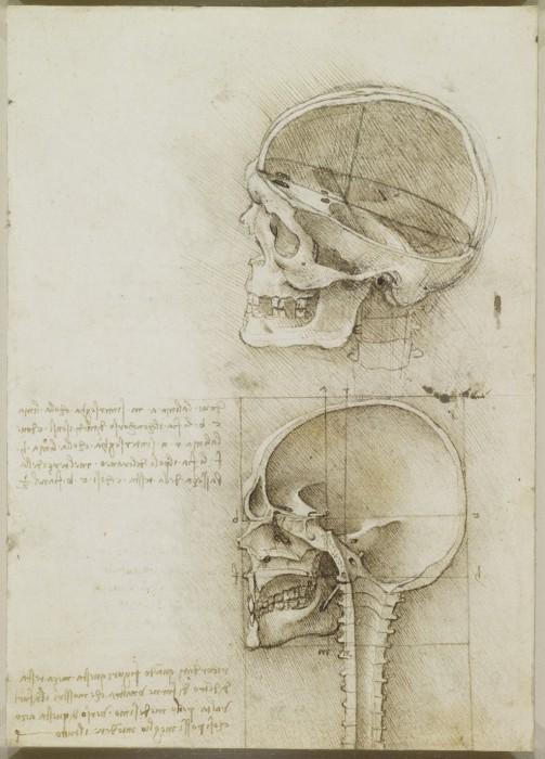 Leonardo-da-Vinchi4