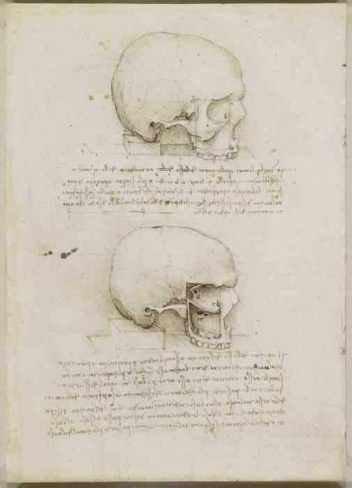 Leonardo-da-Vinchi5