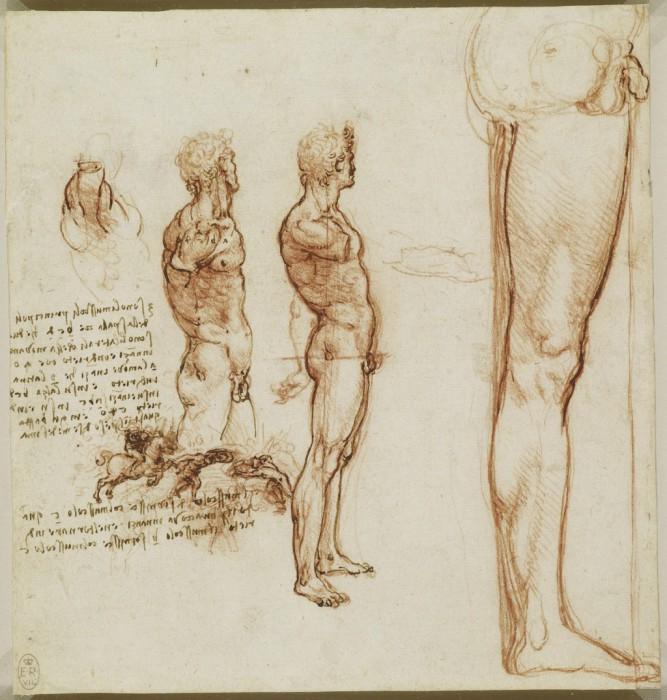 Leonardo-da-Vinchi6