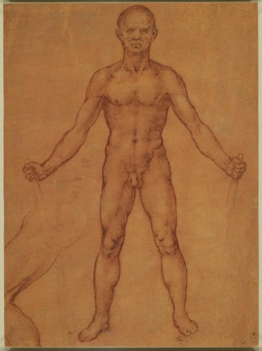 Leonardo-da-Vinchi7