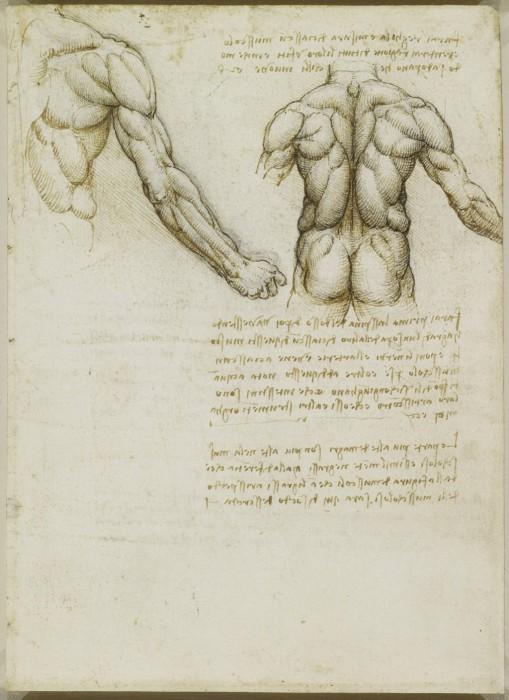 Leonardo-da-Vinchi8