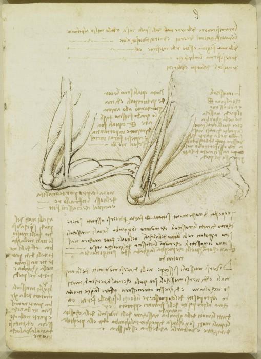 Leonardo-da-Vinchi9
