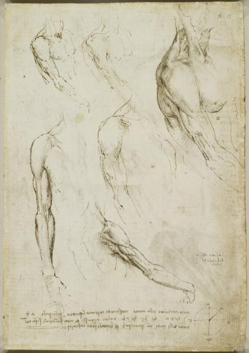 Leonardo-da-Vinchi10