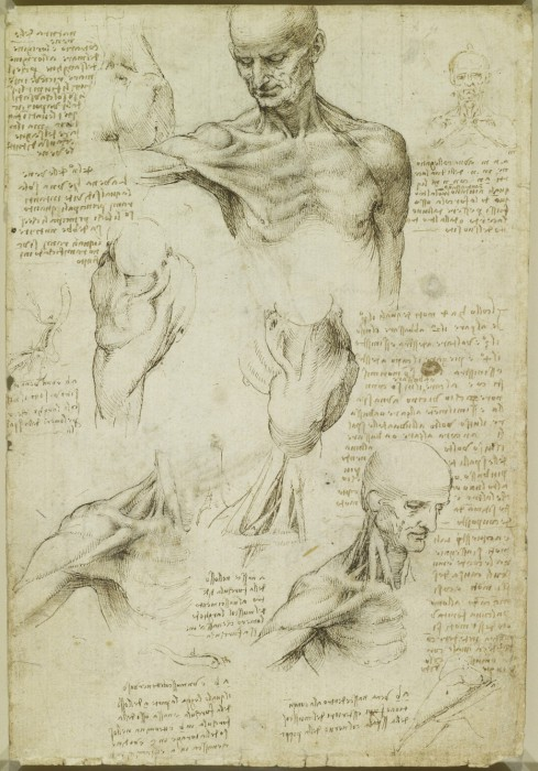 Leonardo-da-Vinchi15