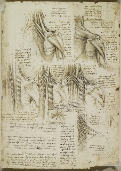 Leonardo-da-Vinchi16