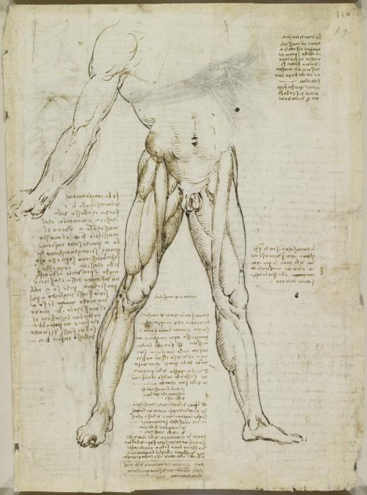 Leonardo-da-Vinchi17