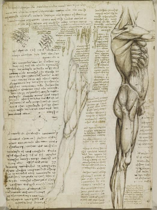 Leonardo-da-Vinchi18