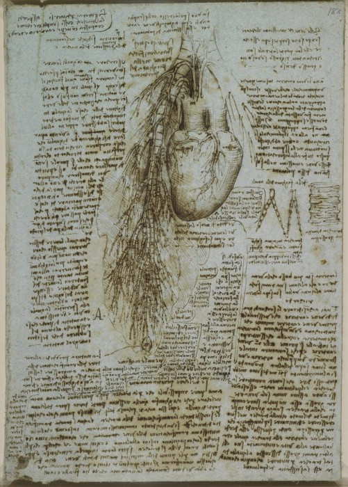 Leonardo-da-Vinchi25