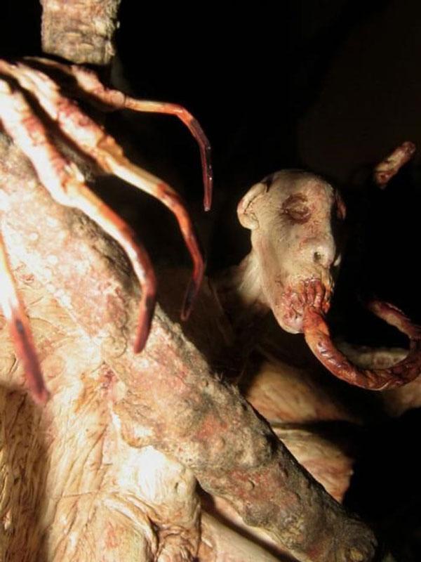 creatures-balbal-1