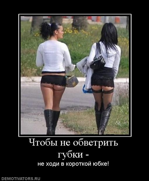 nestik_foresights