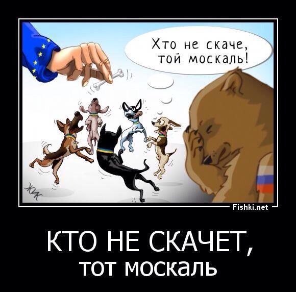 http://ic.pics.livejournal.com/matveychev_oleg/27303223/781686/781686_original.jpg