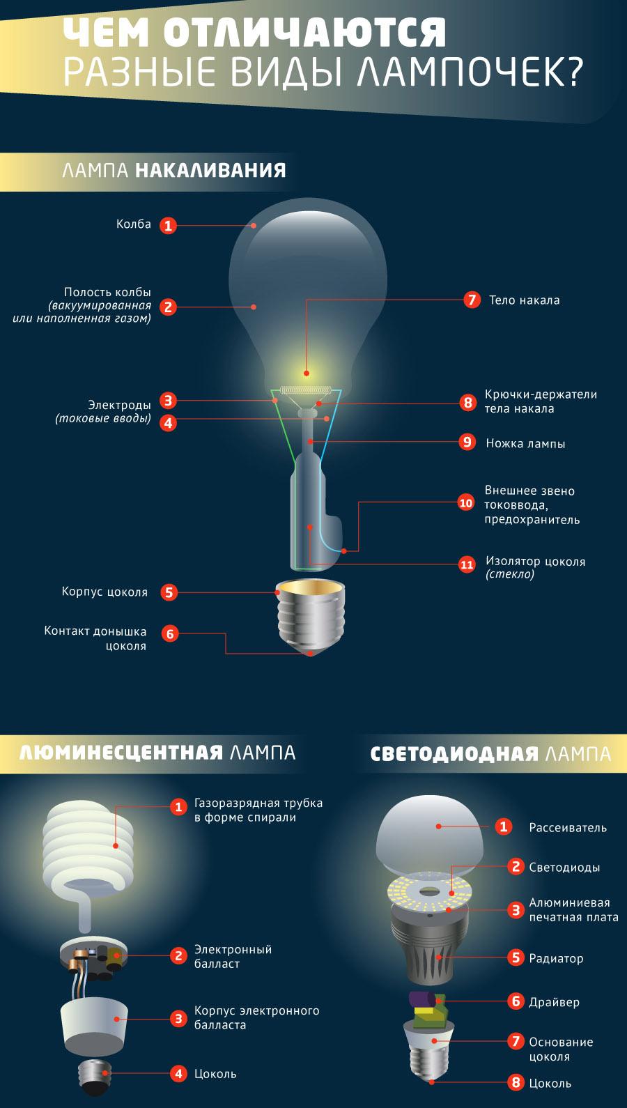 Популярно: какие бывают виды лампочек?