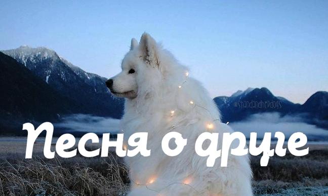 Новогоднее поздравление Центра Льва Гумилева