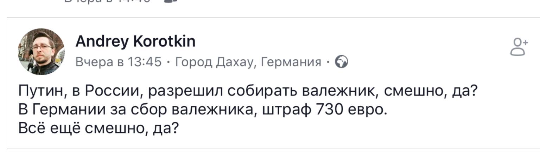 О сборе валежника в России