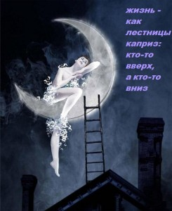 лестница луны