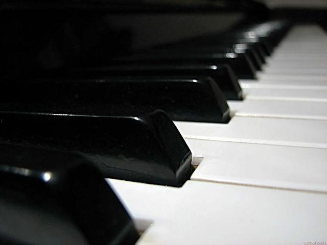 6533833307017644528_klavir3_f