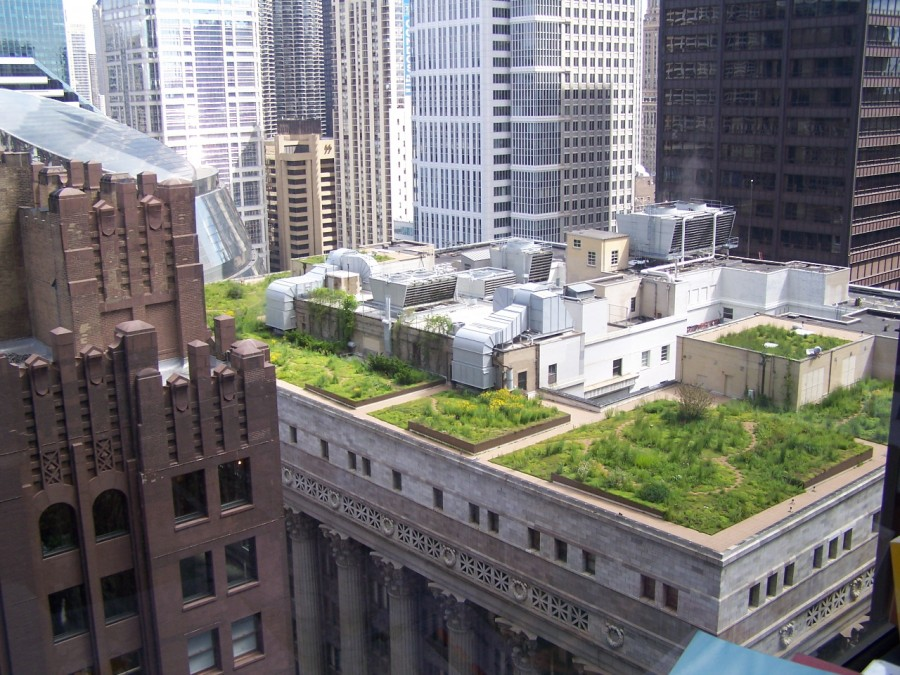 attractive-green-rooftop-of-green-roofs-enviro-and-mental-benefits-for-exterior