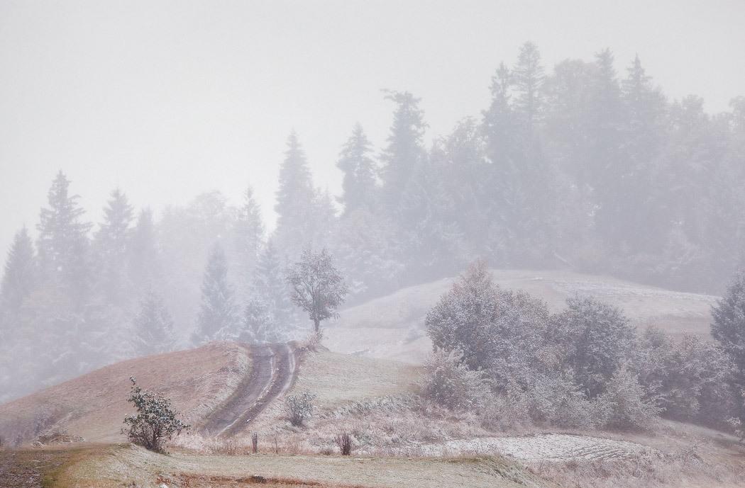 Навстречу зиме