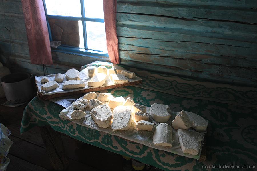 Костин: Небесные пастбища алтайцев (часть1) - фото 8
