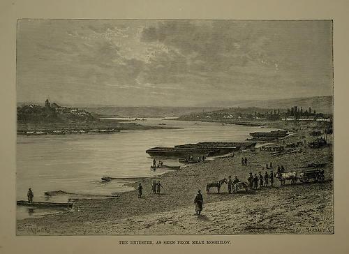 mogilav1880