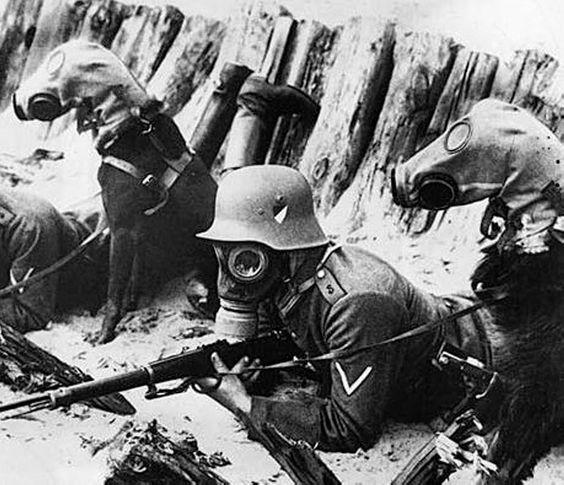 Страшные фото Первой мировой.
