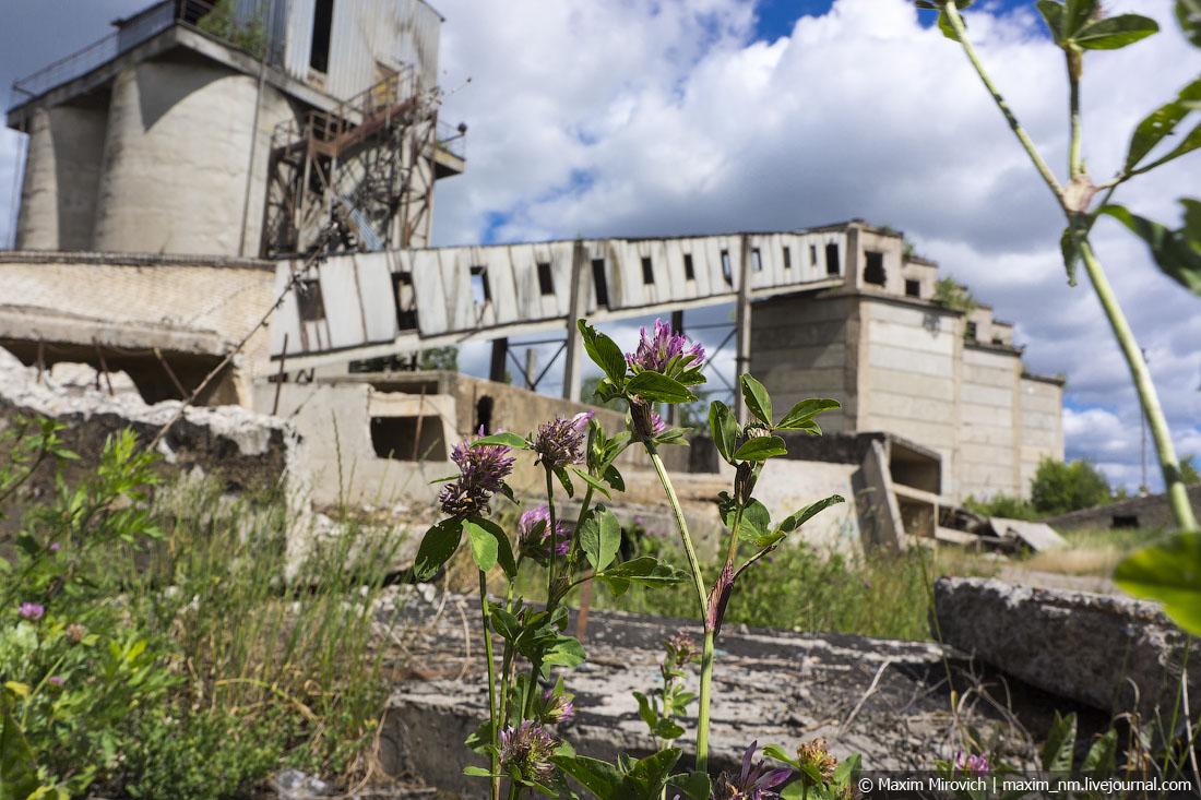 Заброшенный цементный завод.